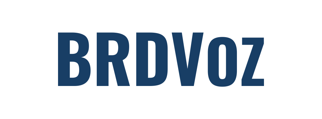 logo Brdvoz